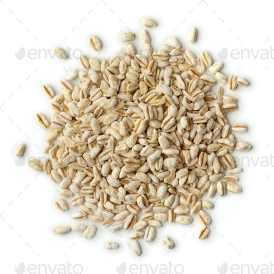 Heap of ebly seeds