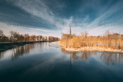 Spring Nature. Trees Woods Standing In Water During A Spring Flo
