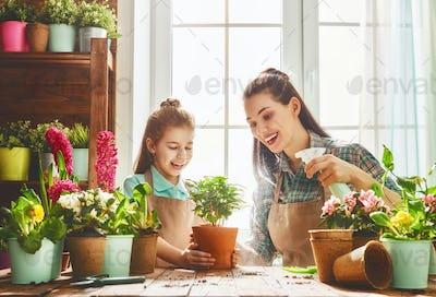 Happy family in spring day.