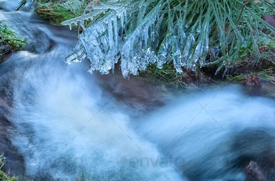 grass in icicles by mountain river
