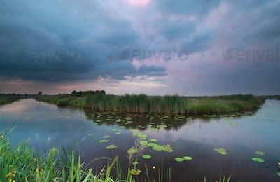 wild pond during summer storm