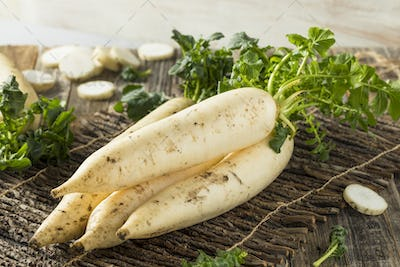 Raw Organic White Daikon