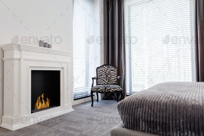 Elegant room with zebra pattern armchair