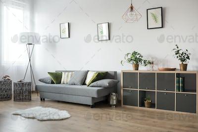 Multifunctional living room area