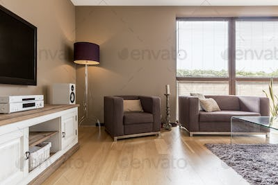 Living room interior with white commode