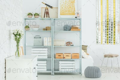 Light flat with bookcase