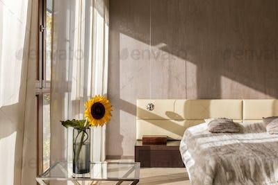 Modern designed bedroom interior