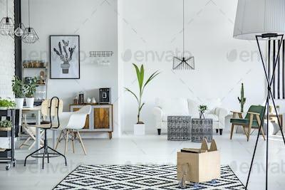 White living room interior