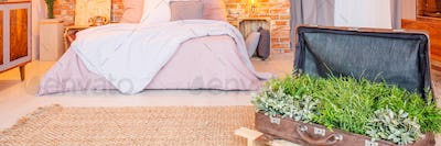 Suitcase with plants in bedroom