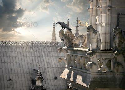 Chimeras on Notre Dame