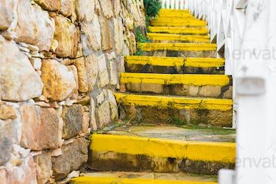 Stairway winds up the summer hillside