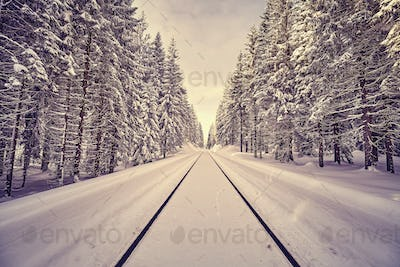 Vintage toned railroad tracks in a winter forest.