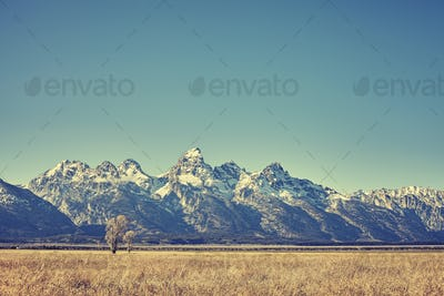 Retro toned view of Grand Teton mountain range, Wyoming, USA