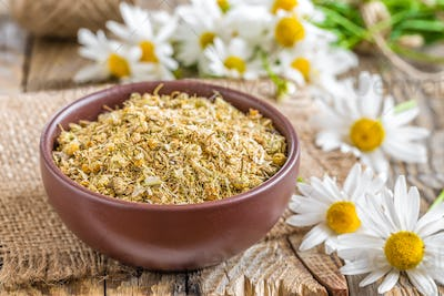 Dried and fresh chamomile flowers and leaves on wooden rustic background, alternative medicine