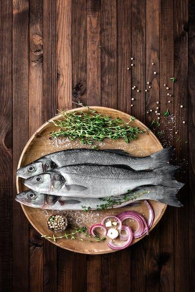 sea bass fish