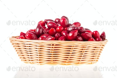 Wicker basket with red dogwood berries.