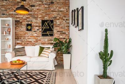 Contemporary decor of room