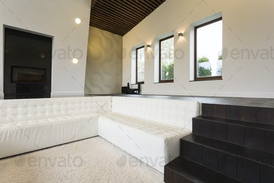 Luxurious living room with sofa