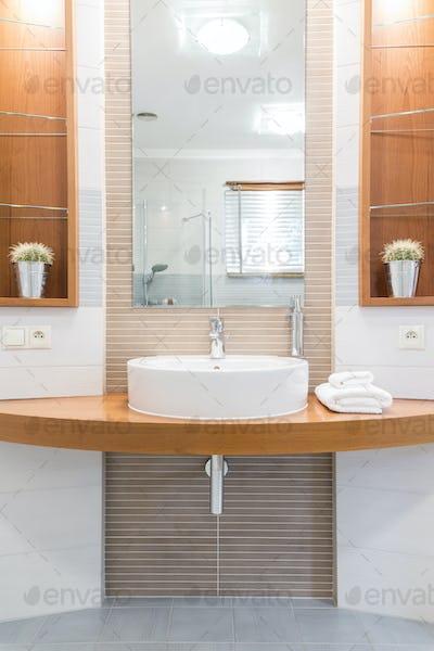 Oval sink in a modern bathroom