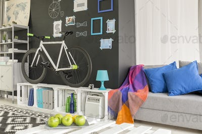 Room with a bicycle