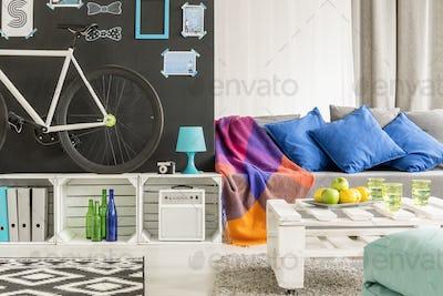 Comfortable student flat