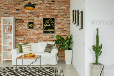 Trendy living room with plants