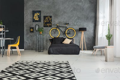 Apartment with bed and bicycle