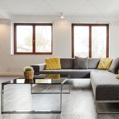 Modern sofa and glass coffee table