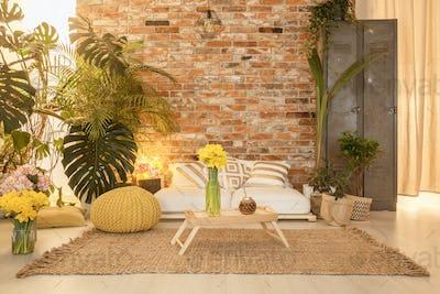 Cozy botanic room