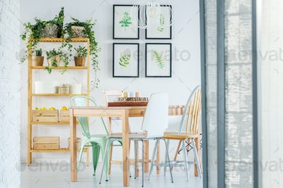 Bright dining room with plants