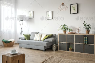 Cozy living room with sofa
