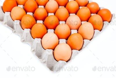 Egg in a carton