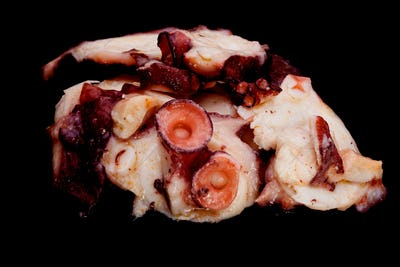 Octopus slices