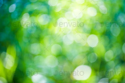 Green bokeh natural background