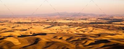 Rolling Hills Agricultural Land Palouse Region Eastern Washington