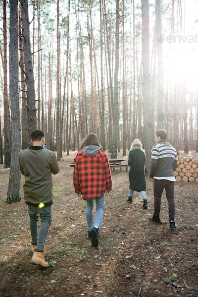 Back view photo of group of friends walking outdoors