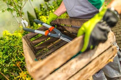 Garden Work Time