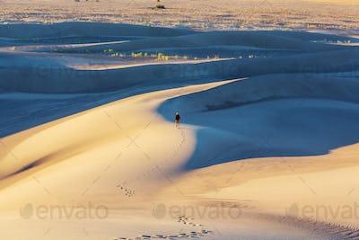 Sand dunes in California