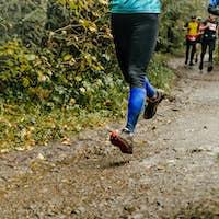 Group Runners Run