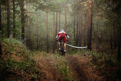 Rider Mountain Bike
