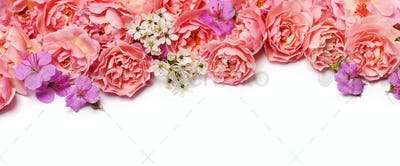 beautiful floral border