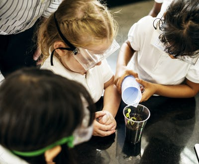 Group of diverse kindergarten students learning planting experim