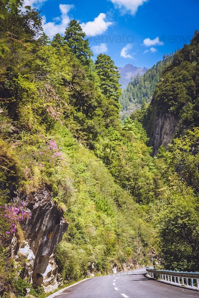Road through the beautiful mountain valley