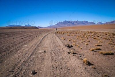 Corrugated road in Altiplano