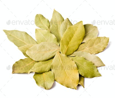 Pile of bay leaves isolated