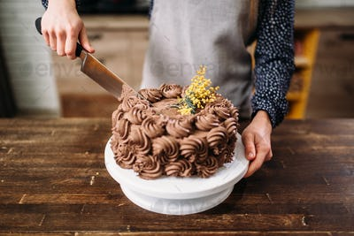 Female hands cutting chocolate cake with a knife