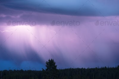 Over Norris Canyon Thunderstorm Lightning Strikes Yellowstone NP