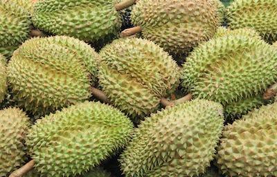 Durian in the market Thailand