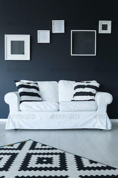 Sofa, rug, and frames