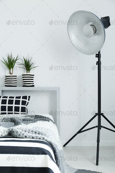 Bed, blanket, plants, and lamp